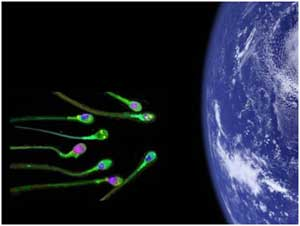 a study of the panspermia theory The theory of panspermia states that life exists through the cosmos, and is distributed between planets, stars and even galaxies by asteroids, comets, meteors and planetoids in this respect, life began on earth about 4 billion years ago after microorganisms hitching a ride on space rocks landed on.