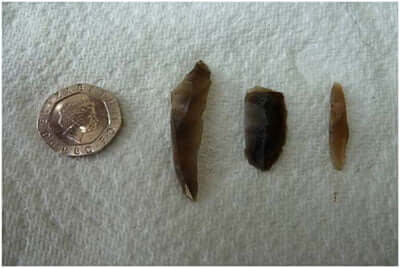 Mesolithic-tools