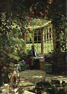 Man reading newspaper in country house conservatory.