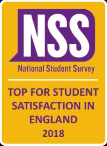 NSS badge 2018