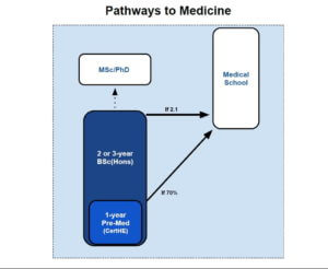 Pathways to Medicine. A diagram showing the possible routes to get into Medical School; either by successful completion of a one year Pre-Med (CertHE), or by undertaking a two or three year BSc (Hons) in a science or biomedical field.