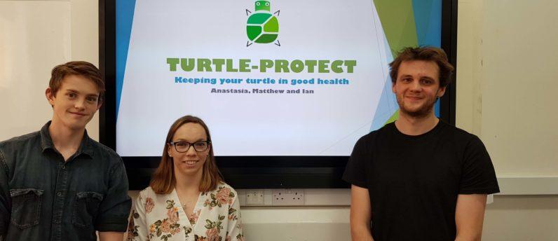 EIBF Turtle Project