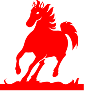 The Shire Foundation logo